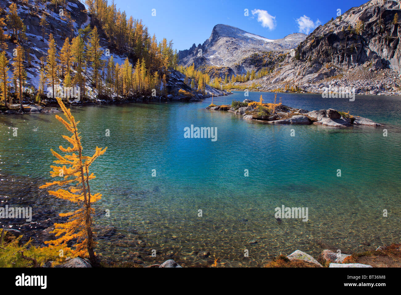 Larch trees at Perfection Lake in the Enchantment Lakes wilderness in Washington state, USA - Stock Image