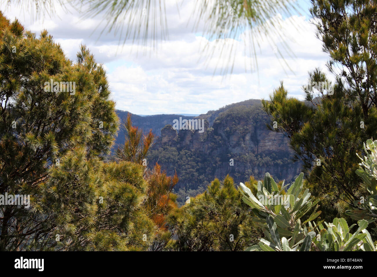 The Three Sisters seen from Sublime Point Lookout, Blue Mountains National Park, New South Wales, eastern Australia, - Stock Image