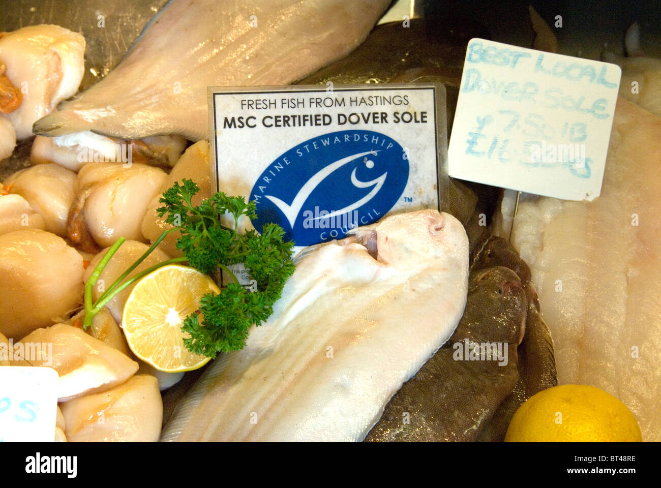 Fresh Hastings fish Marine Stewardship Council MSC certified sustainable Dover sole on sale at Rock-a-Nore Fisheries - Stock Image