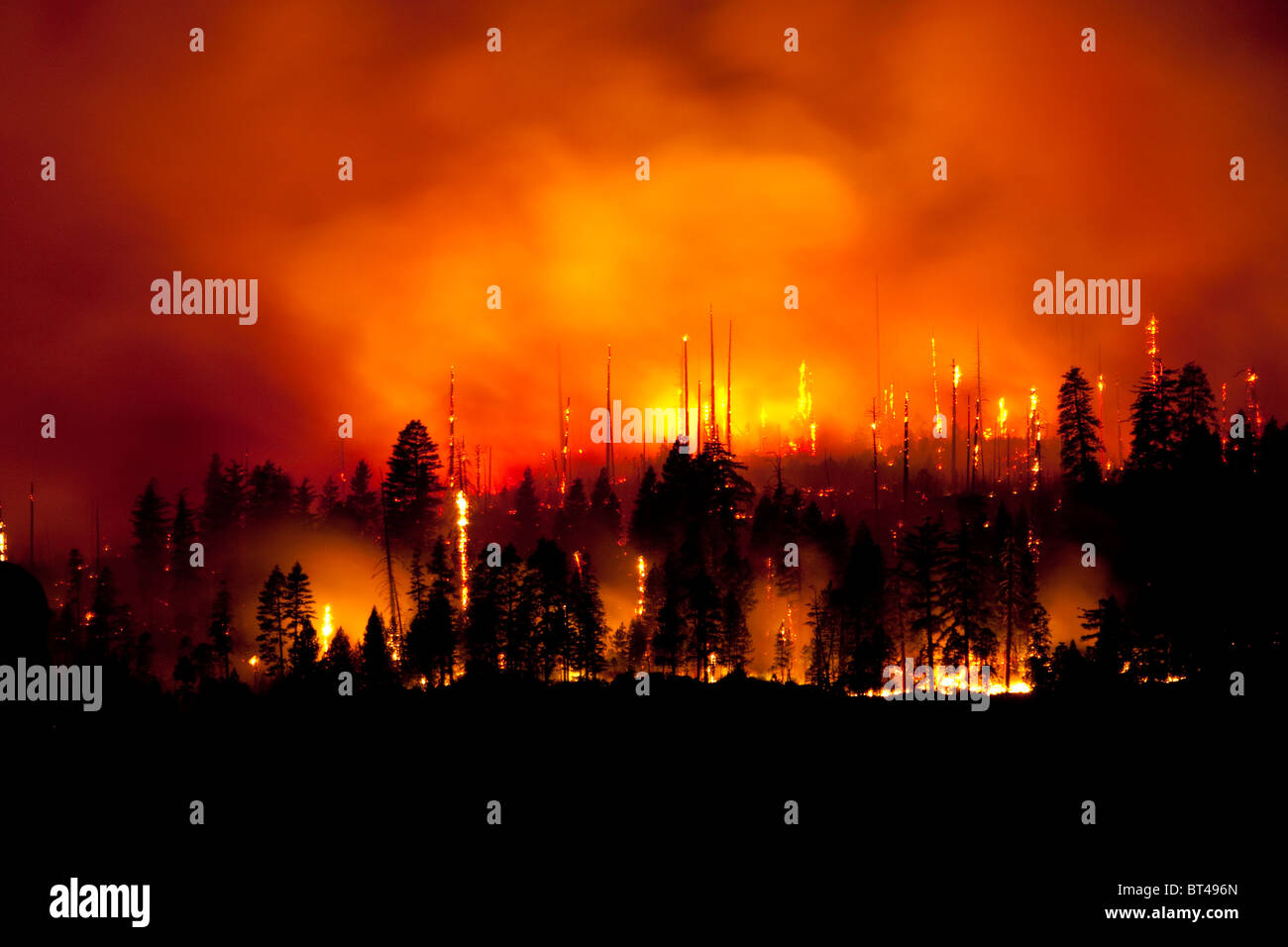 2009 Wildfire in Yosemite National Park - Stock Image