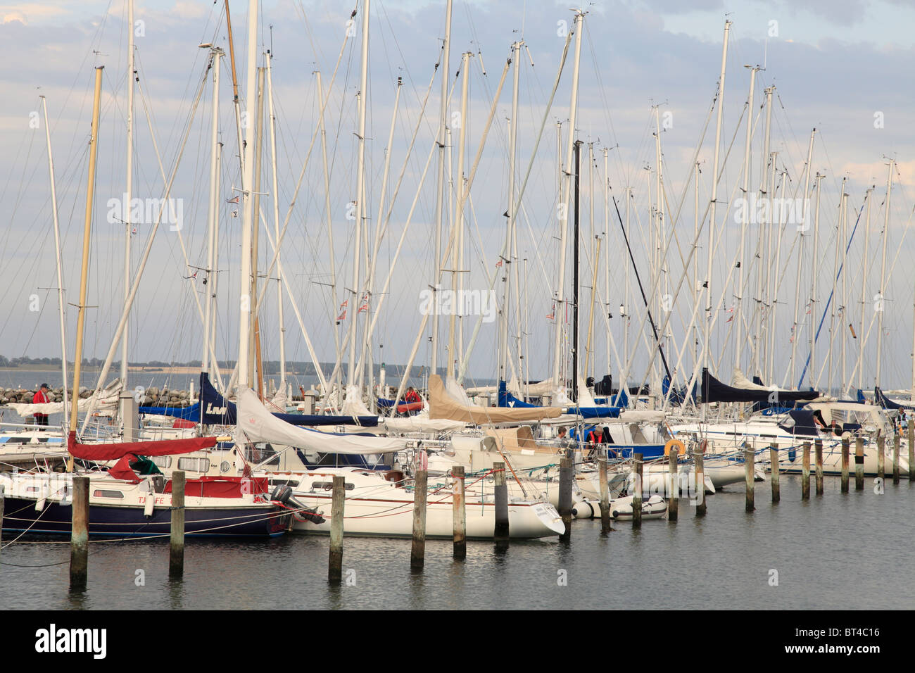 sailing boat harbour in Kerteminde - Stock Image