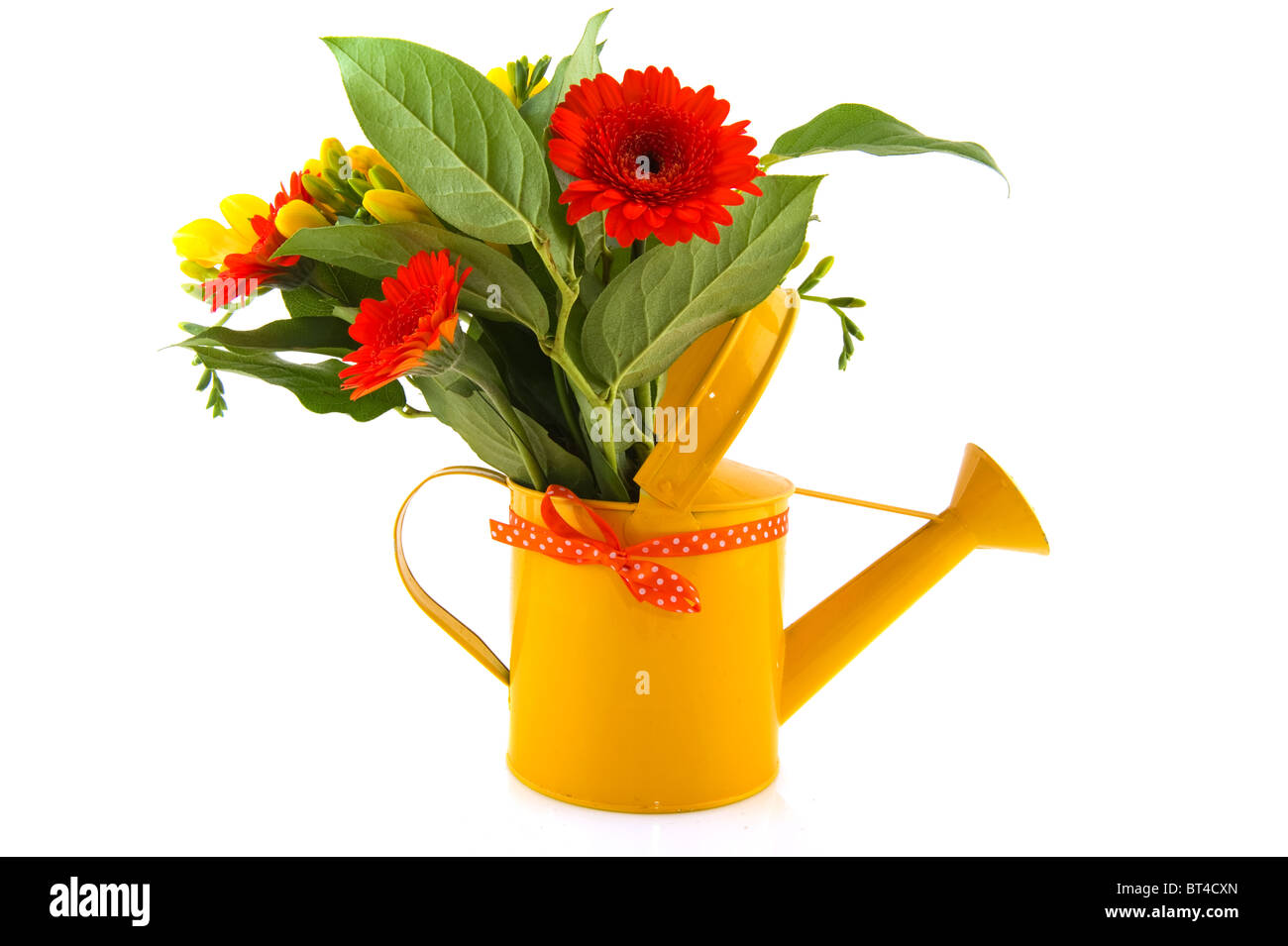 Flower bouquet with orange gerber and yellow freesia in watering can flower bouquet with orange gerber and yellow freesia in watering can izmirmasajfo Gallery