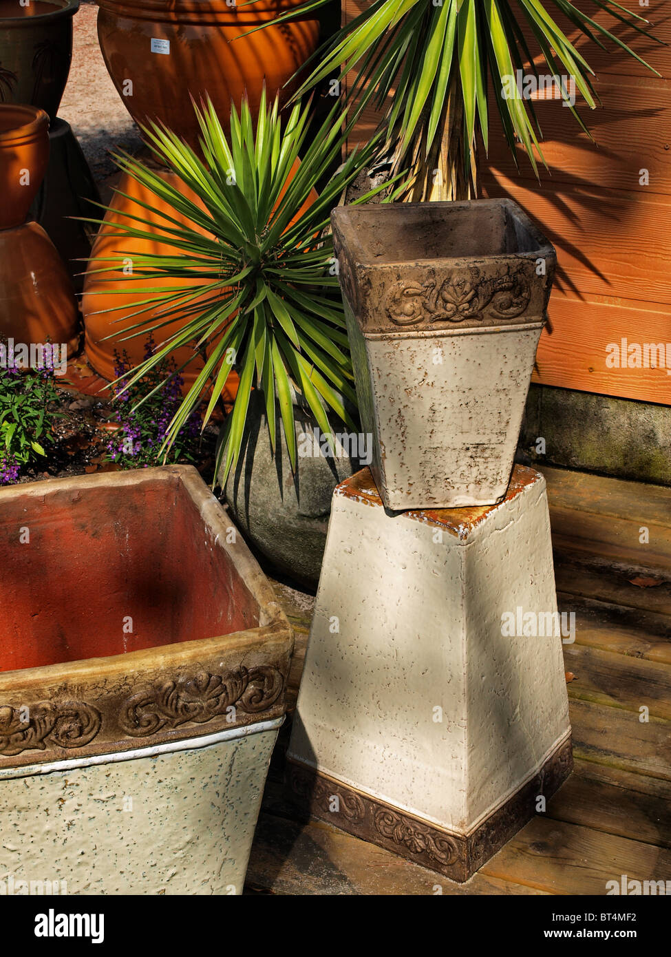 mexican for splash planter classic adding planters perfect to of a your interiors pin colour