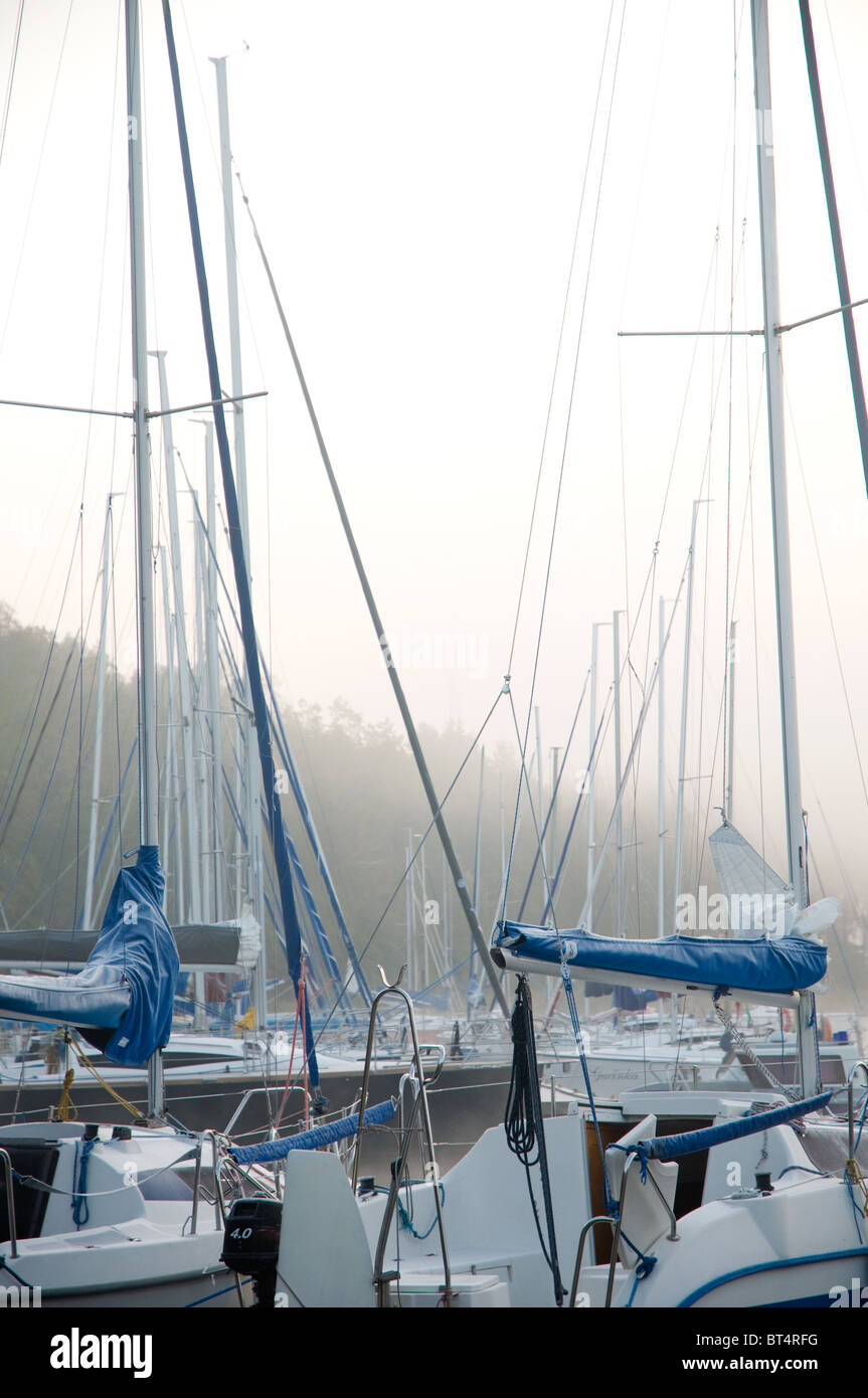 Masts of moored boats in autumn morning fog - Stock Image