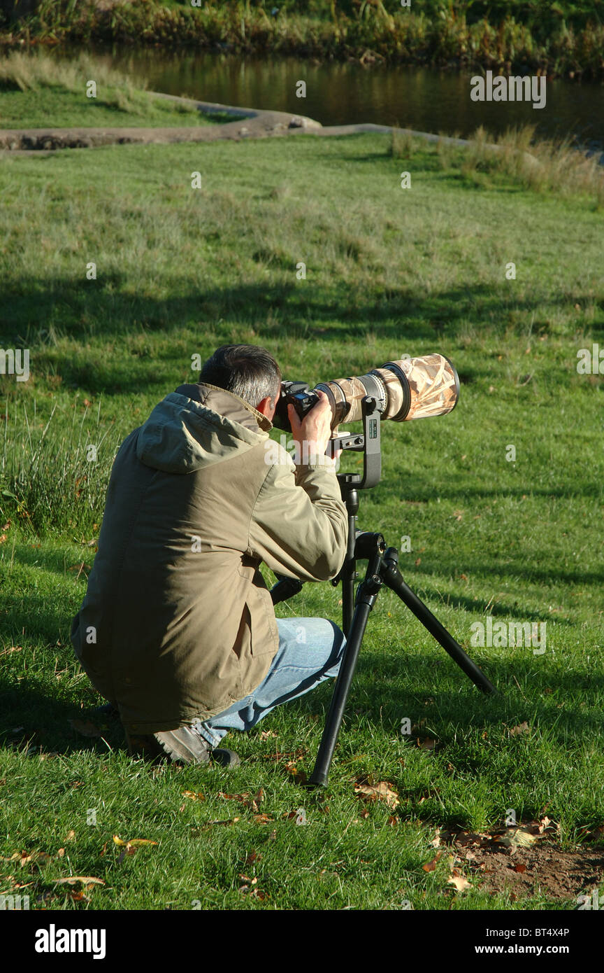 professional wildlife photographer with zoom lens and tripod, Bradgate Park, Leicestershire, England, UK - Stock Image