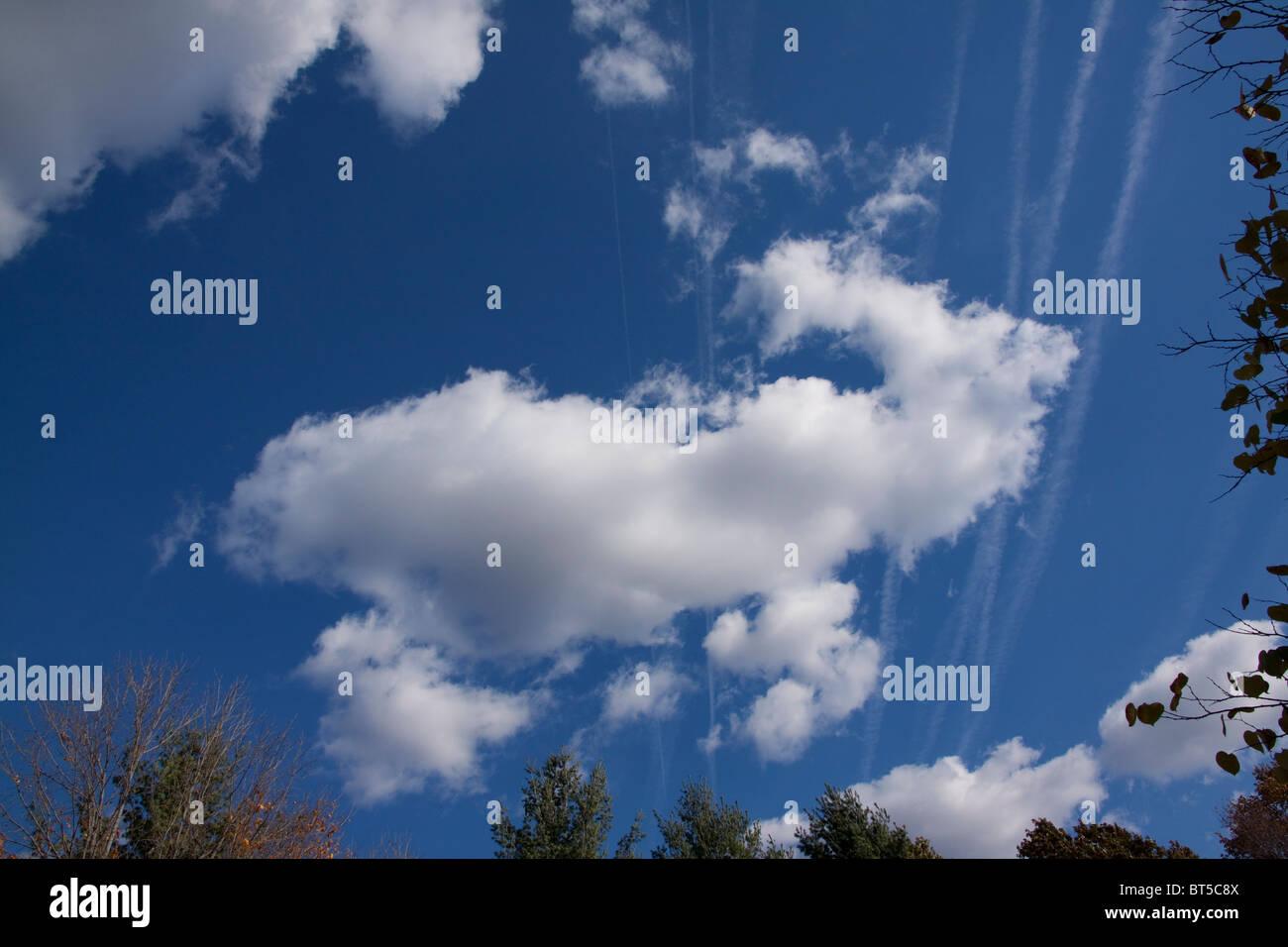 artificial floating float adrift drifting streak streaks pattern patterns mediocris vista vistas moving movement - Stock Image
