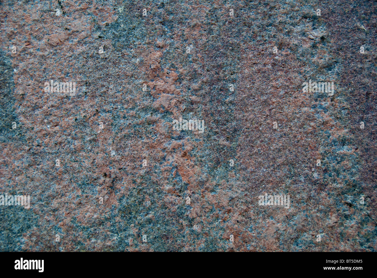 Office tower exterior wall (detail) in Charlotte, North Carolina, USA - Stock Image