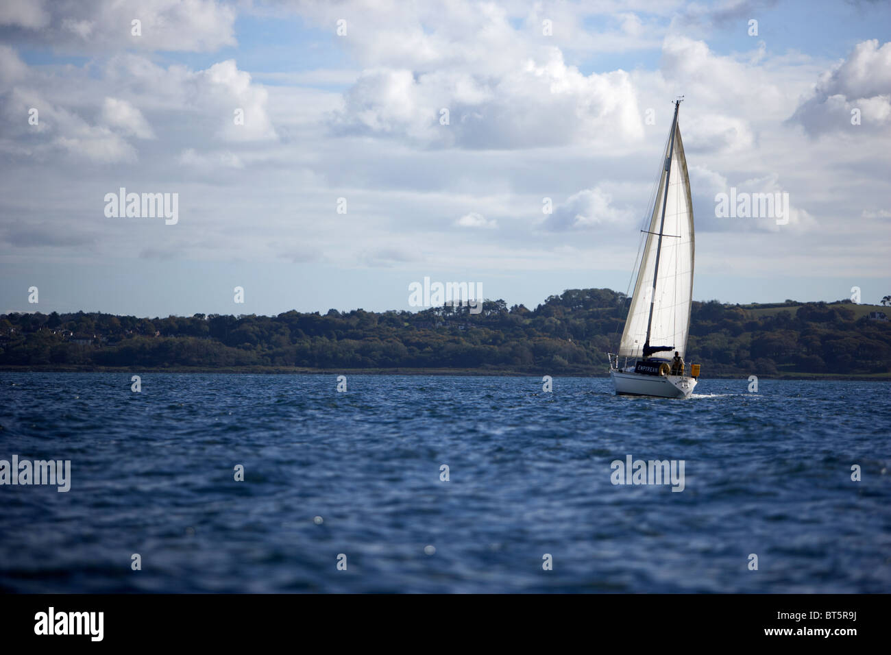 yacht under sail across belfast lough northern ireland uk - Stock Image