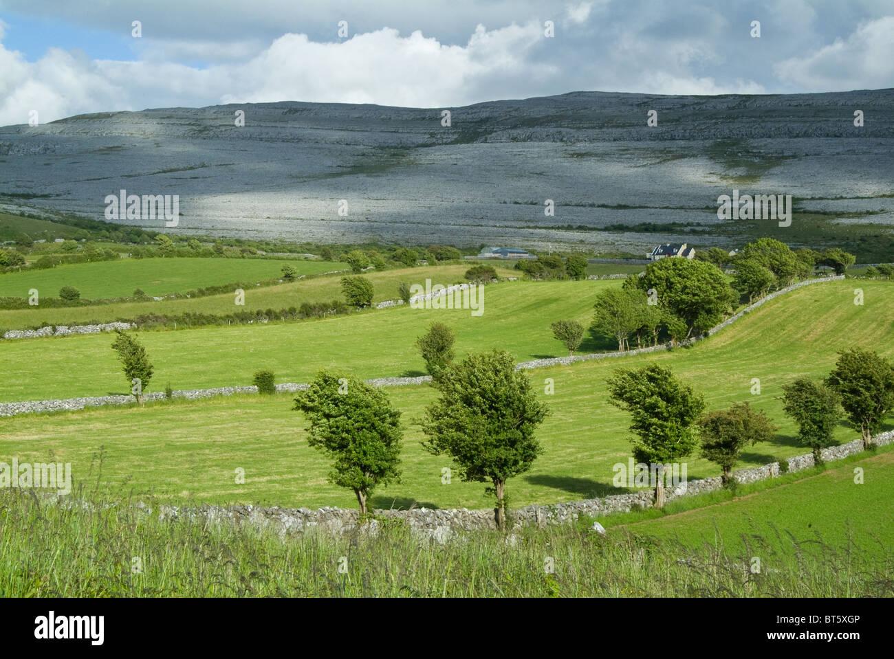 karst landscape in County Clare, Ireland Burren limestone paving in distance - Stock Image