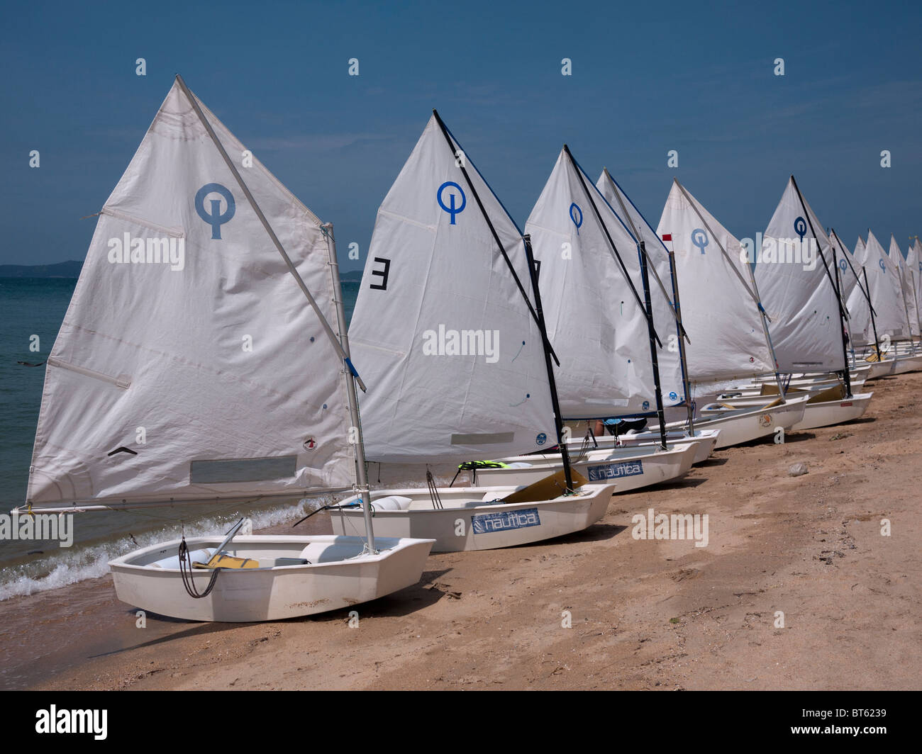 A fleet of Optimist dinghies - Stock Image