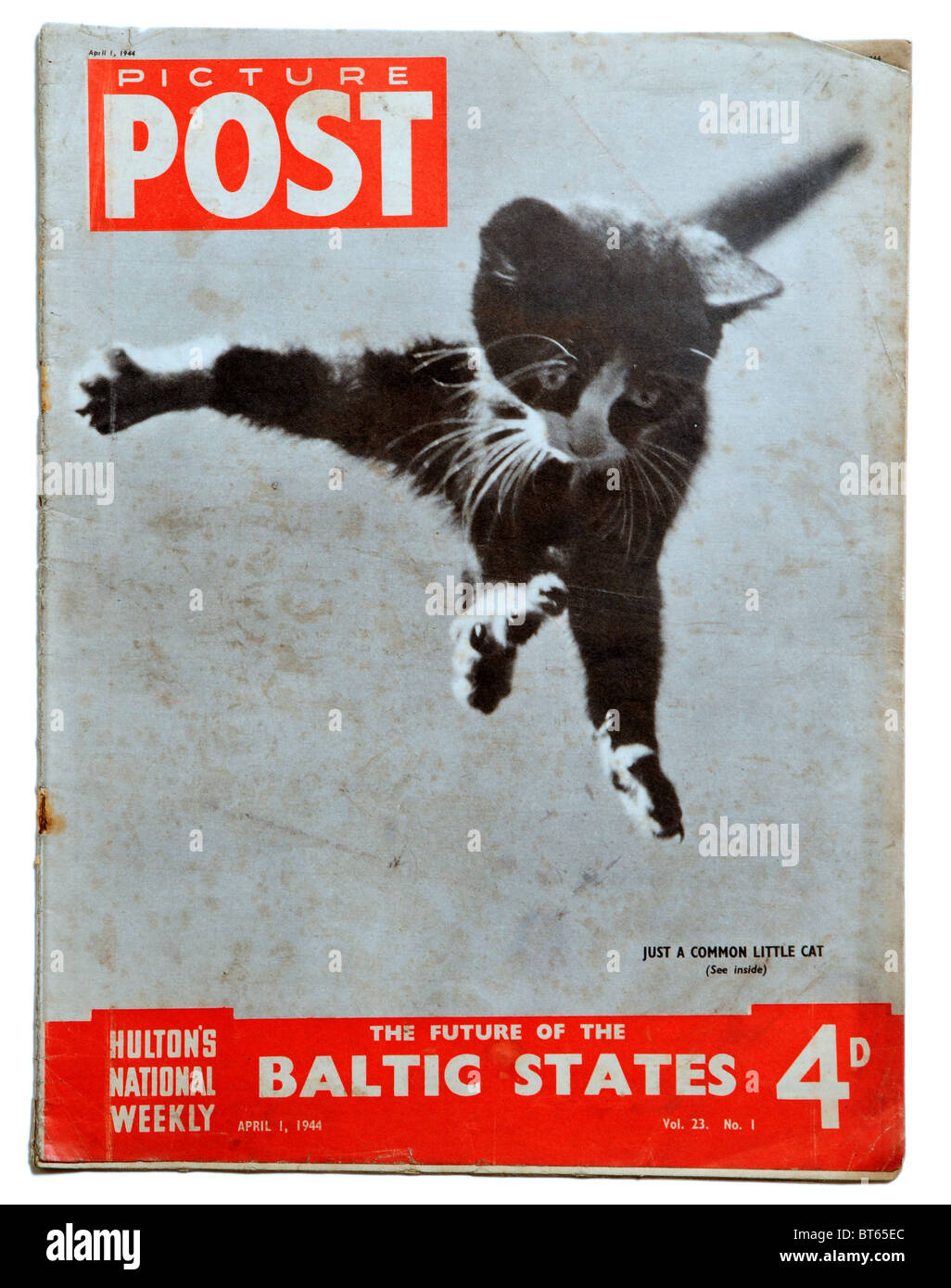 1 april 1944 cat kitten flying falling Picture Post prominent photojournalistic magazine published United Kingdom - Stock Image