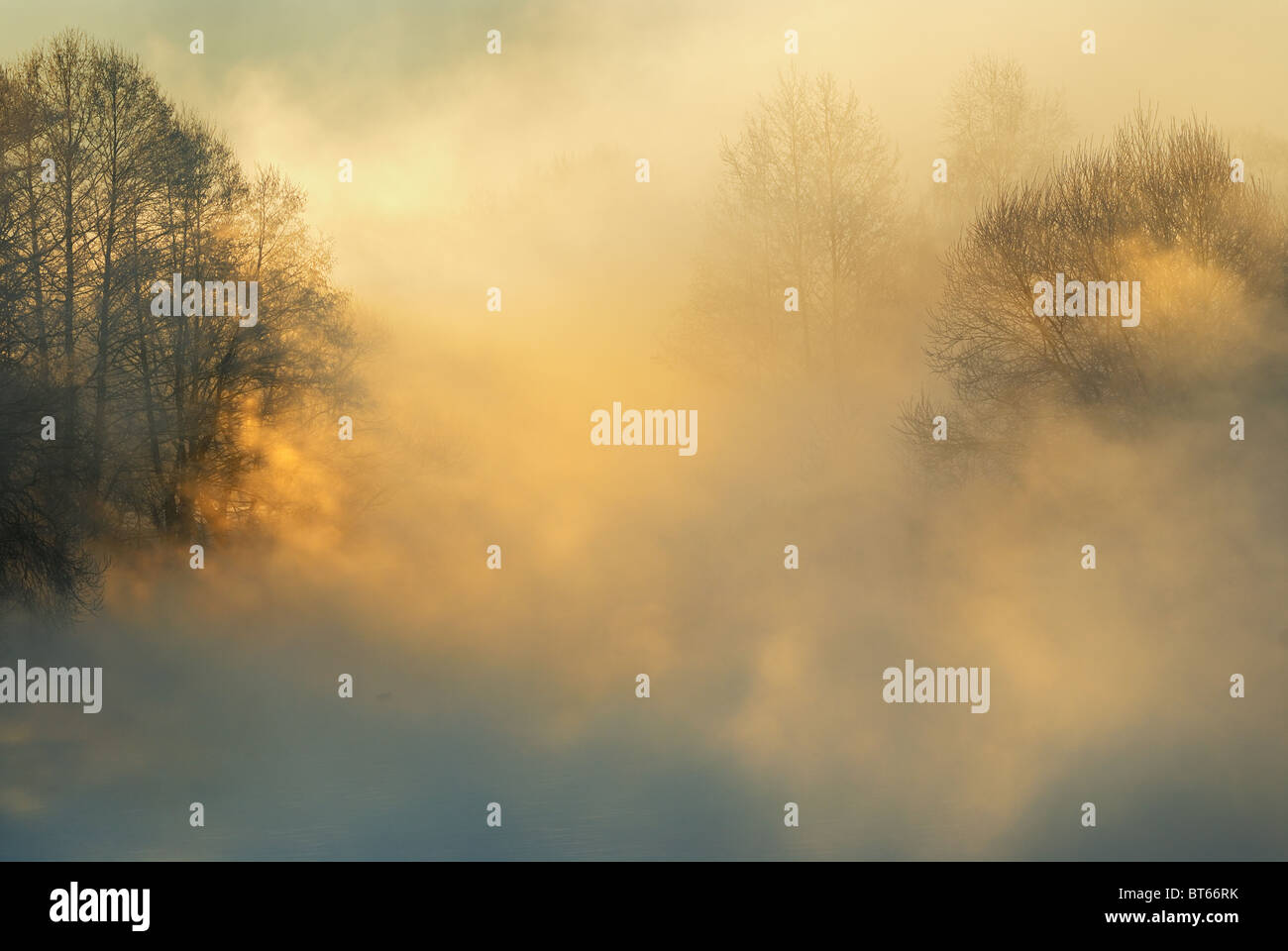 Frosty winter morning - Stock Image