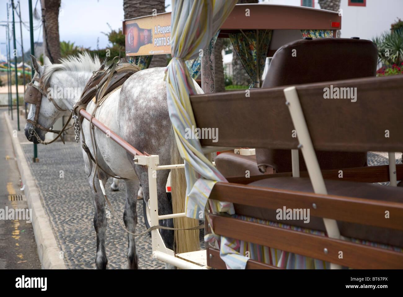 Porto Santo Horse and Cart - Stock Image