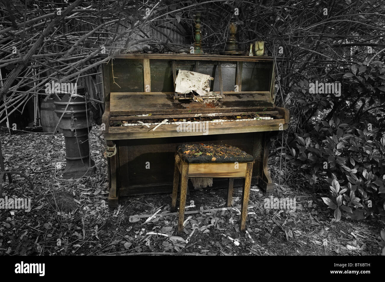 Derelict piano and stool among the garden bushes - Stock Image