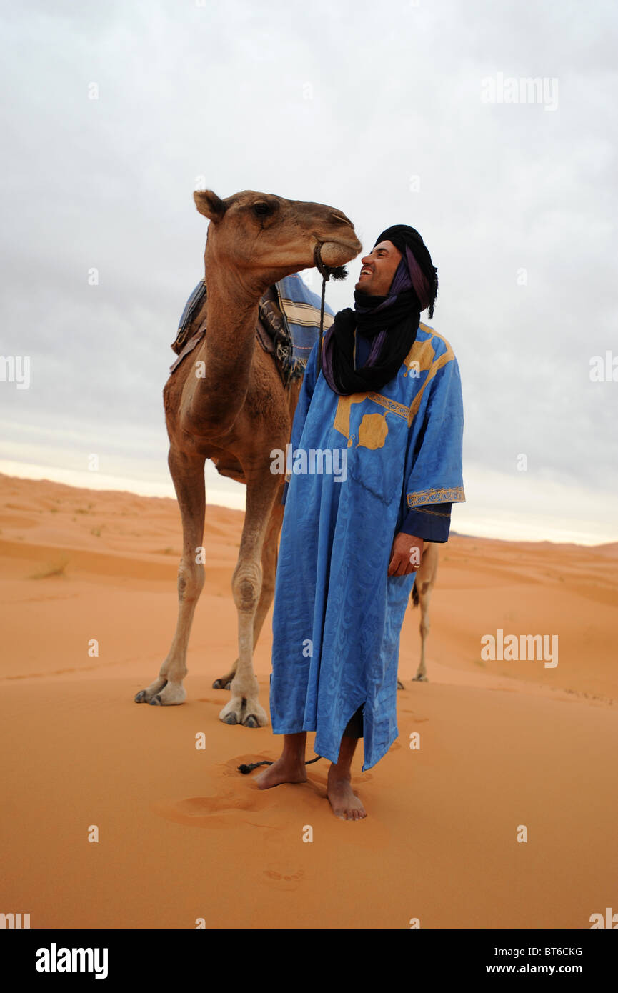 Moroccan Berber talks to his Dromedary camel in the Sahara desert. - Stock Image