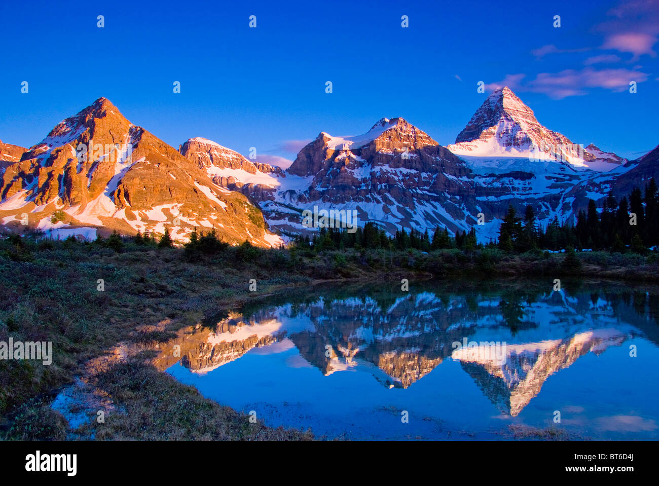Mt. Assinibone at sunset, Matterhorn of the Rockies, Mt. Assiniboine Provincial Park, Canadian Rockies, British - Stock Image
