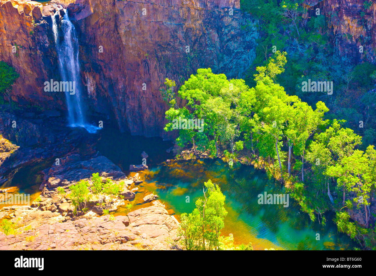 Waterfall, Nitmiluk National Park, Australia, falls from Arhemland Escarpment, Northern Territory, Eucalyptus (gum) - Stock Image