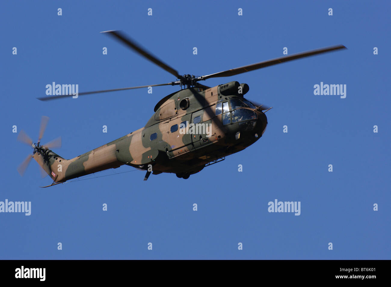 Puma Military helicopter - Stock Image
