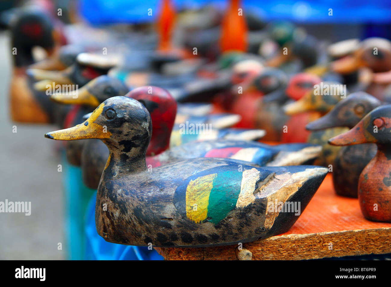 Duck decoy arrangement row colorful hand painted for hunters - Stock Image