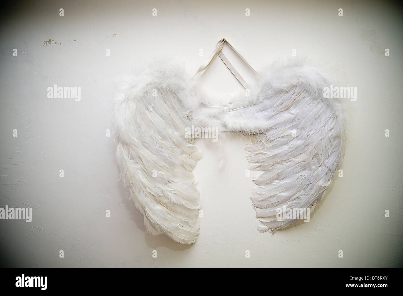 Angel wings on a wall - Stock Image
