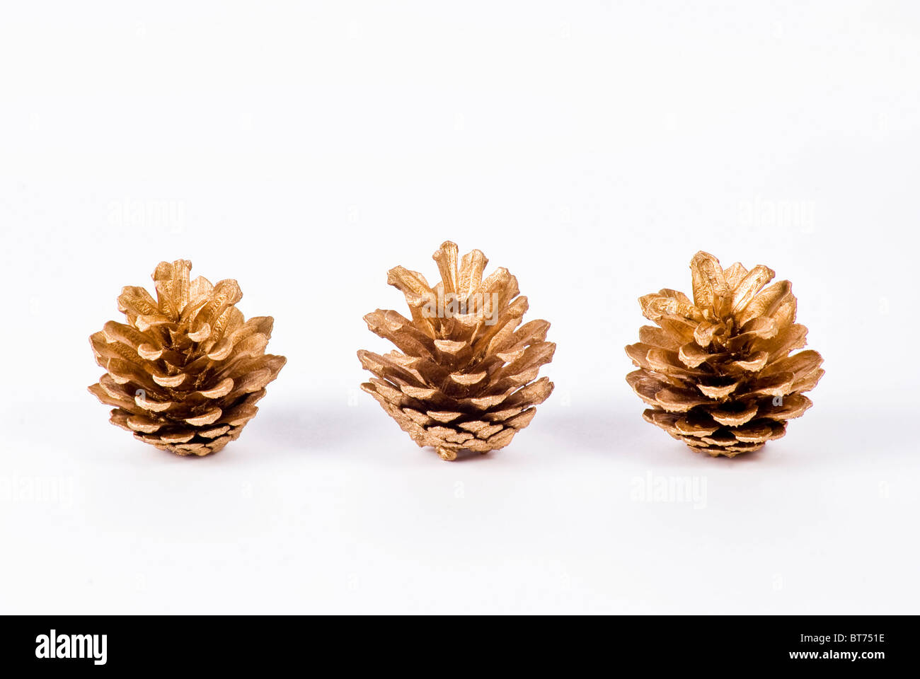 Christmas decoration of pine cones on white background - Stock Image