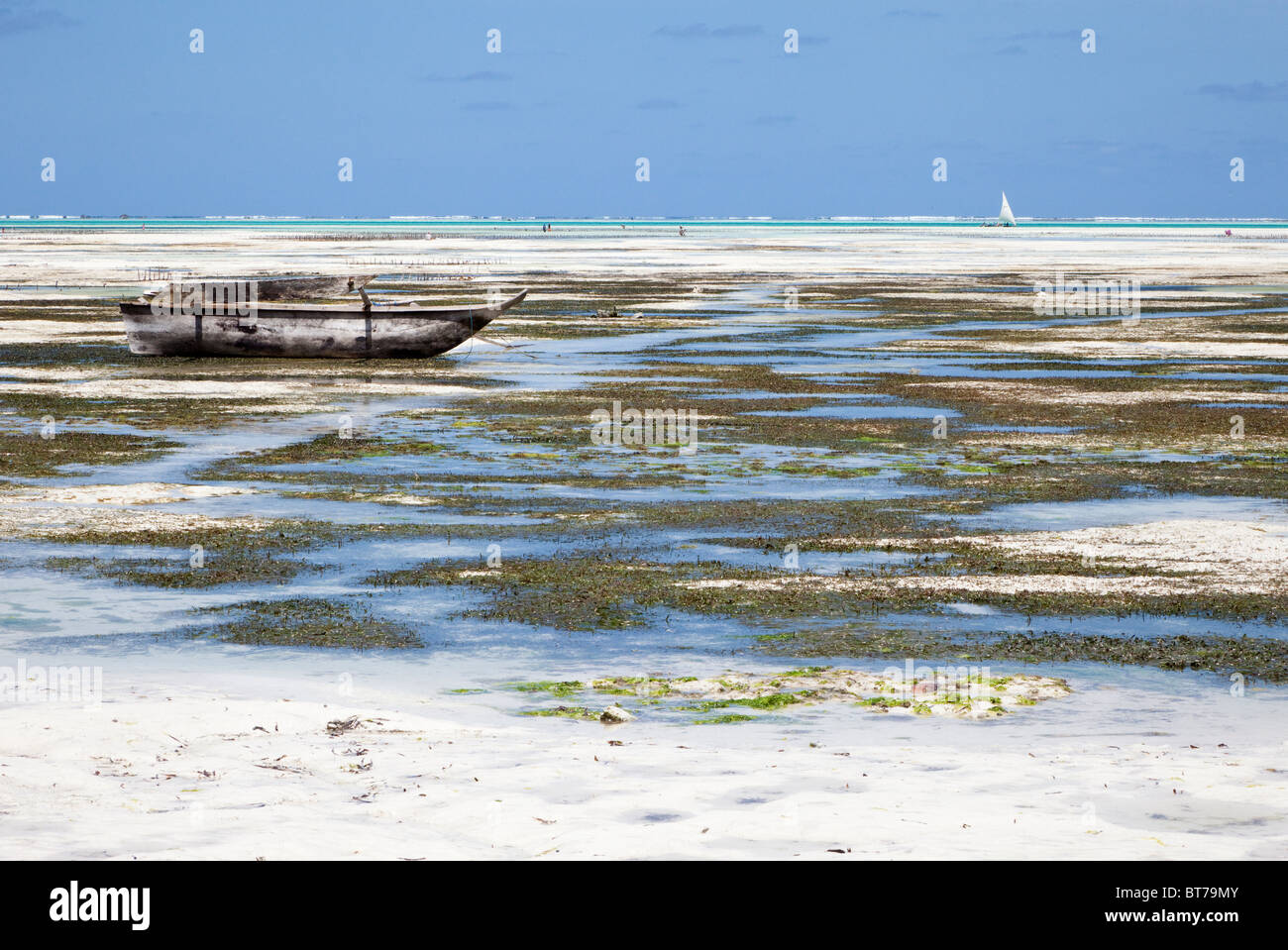Jambiani, Zanzibar, Tanzania. Zanzibar's Eastern Shore at Low Tide. The protective reef is about a mile offshore. - Stock Image
