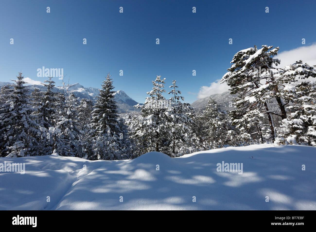 Wintery mountain forest above Garmisch-Partenkirchen, in the distance, Wetterstein Range with Alpspitz Mountain - Stock Image