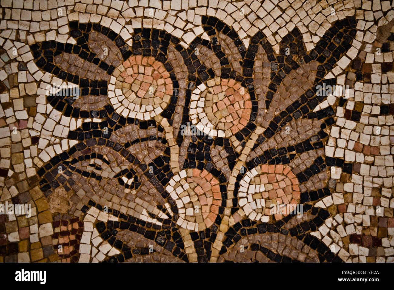 Detail from mosaic floor of the 8th Century Church of St. Stephen at Umm al-Rasas, Jordan. - Stock Image