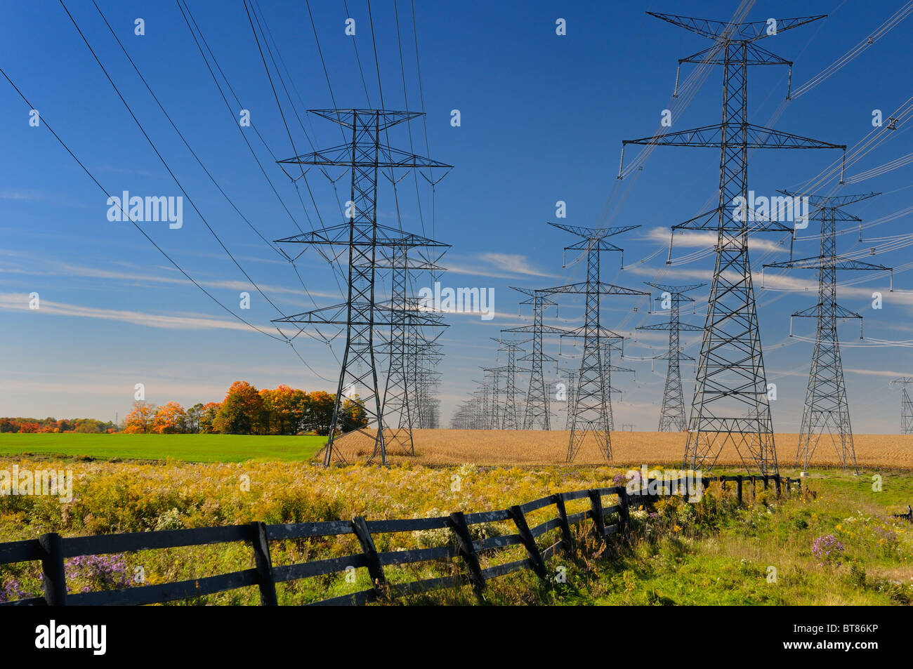 Hydro electric power line towers from the Pickering Nuclear Power Plant running through farm fields of Ontario - Stock Image