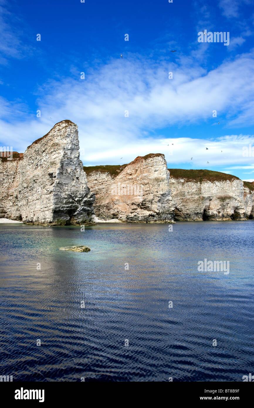 Cliffs at Bempton, North Yorkshire UK - Stock Image
