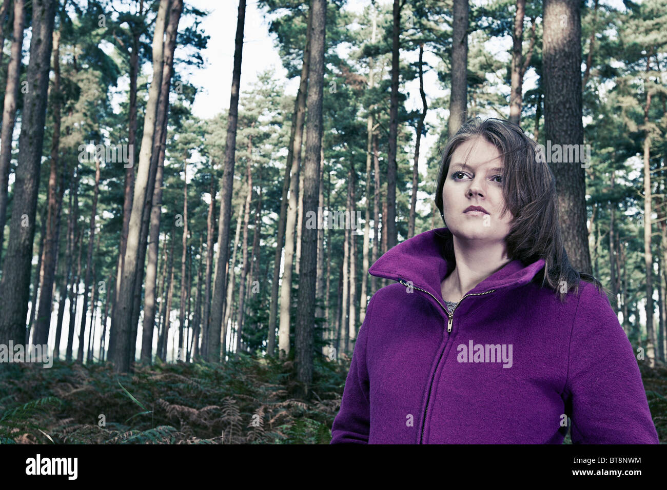 Shot of a Woman in Purple Coat in Forest - Stock Image