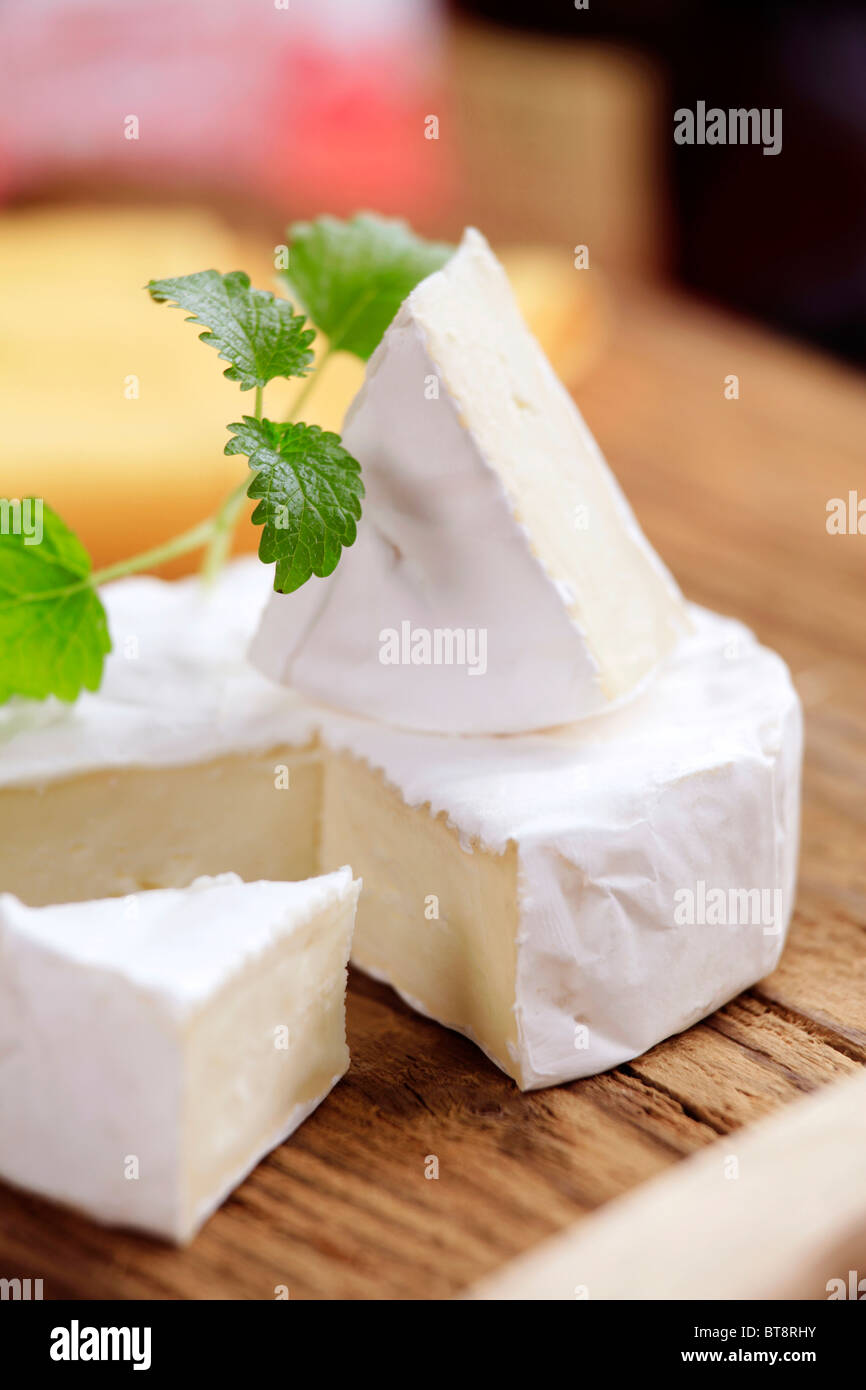 Pieces of white rind cheese - Stock Image