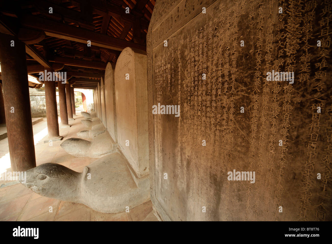 Memorial tablets on stone turtles at the Temple of Literature Van Mieu, Hanoi, Vietnam, Asia - Stock Image