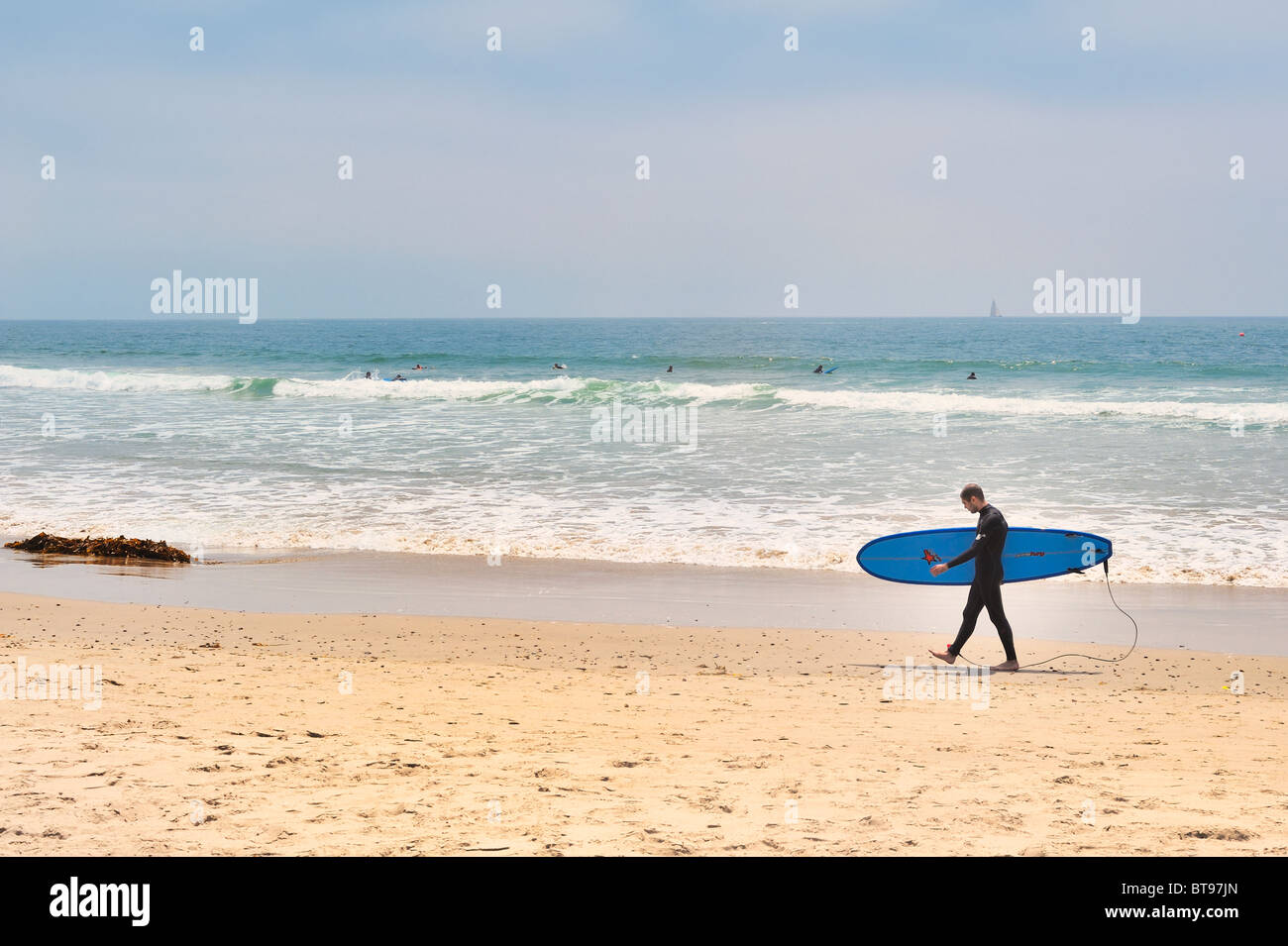 Surfing USA : Male surfer profile view walks on Venice Beach, Los Angeles, California, wearing wetsuit carrying Stock Photo
