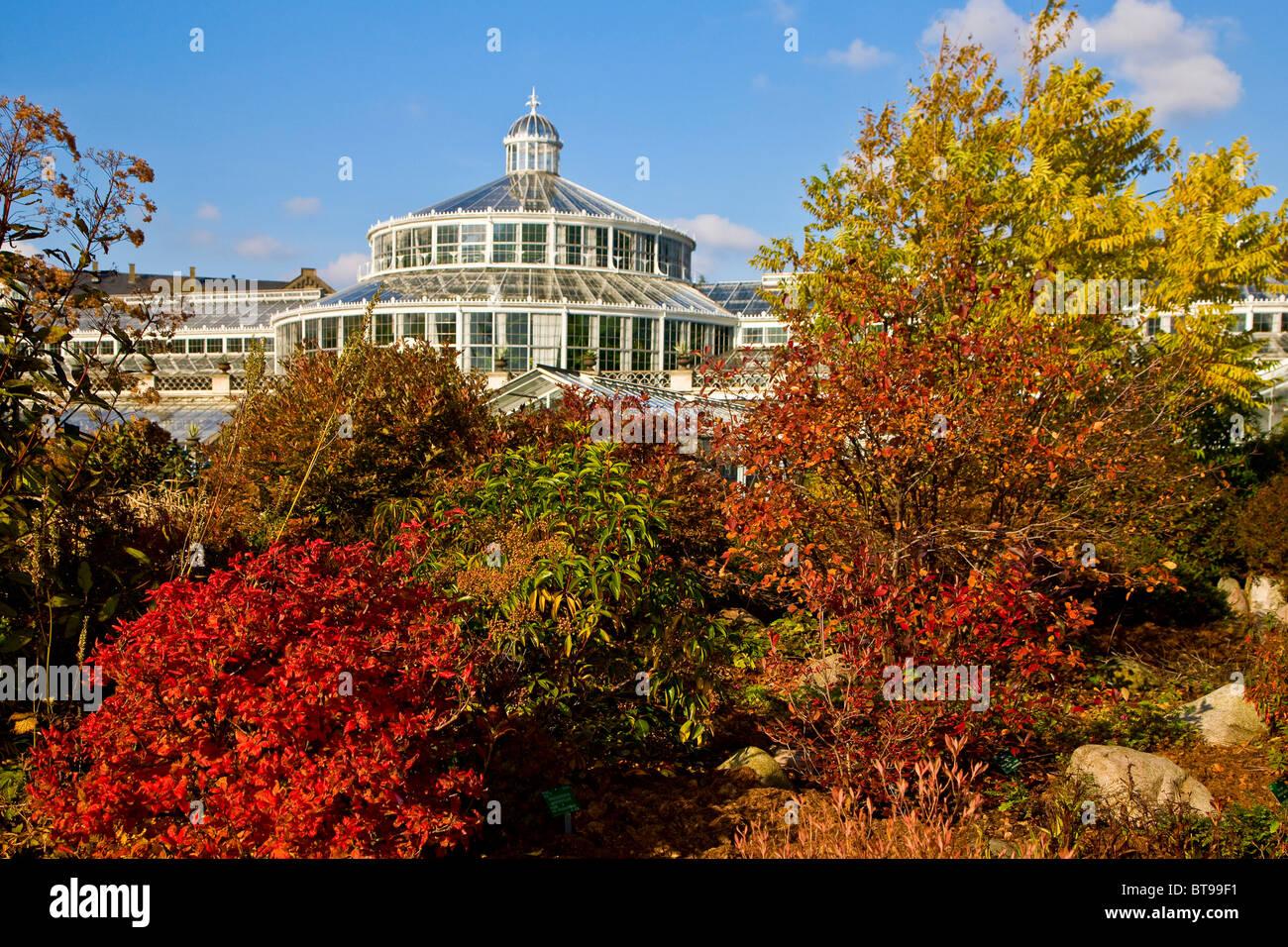 Botanical Garden Autumn Trees Stock Photos & Botanical Garden Autumn ...