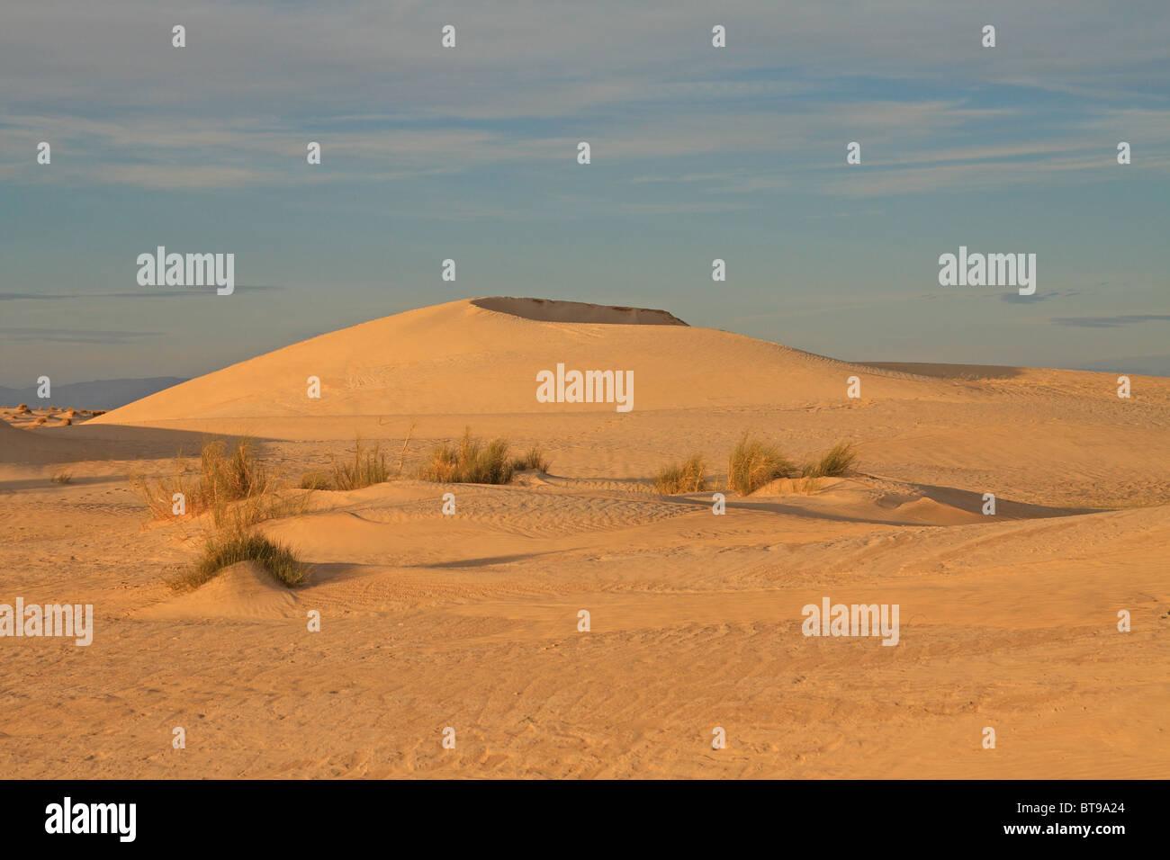 Sand dunes in the Sahara Desert, near Tozeur, western Tunisia - Stock Image