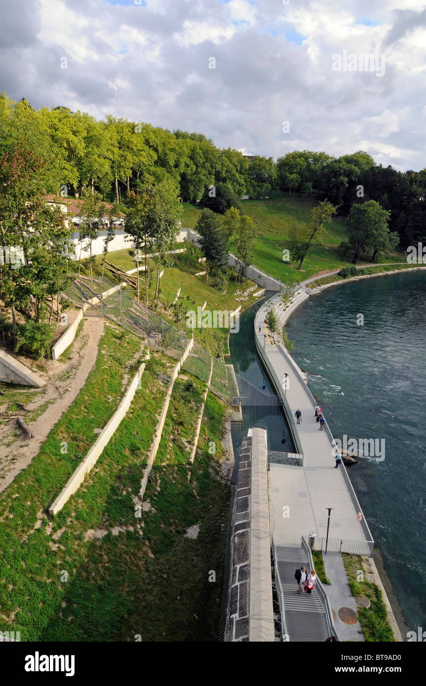 Bears' park, a green space dedicated to the city's bears and replacing the old bears pit in Bern, Switzerland. Stock Photo