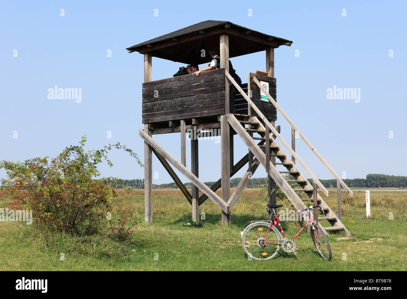 Observation look-out, National Park Neusiedler See-Seewinkel, Burgenland, Austria, Europe - Stock Image