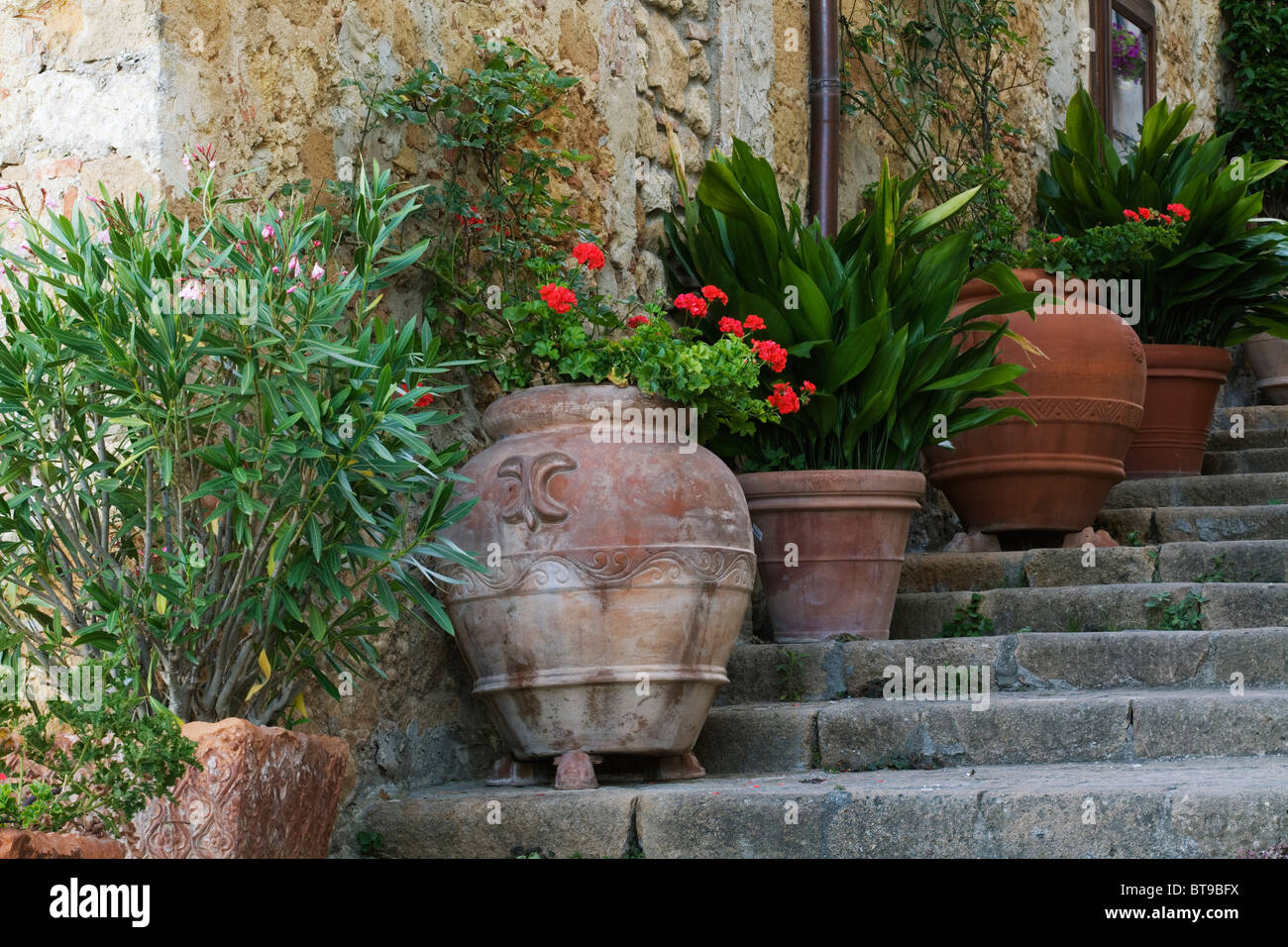 Pienza, showing decorative pots on steps with Geranium - Tuscany, Italy - Stock Image