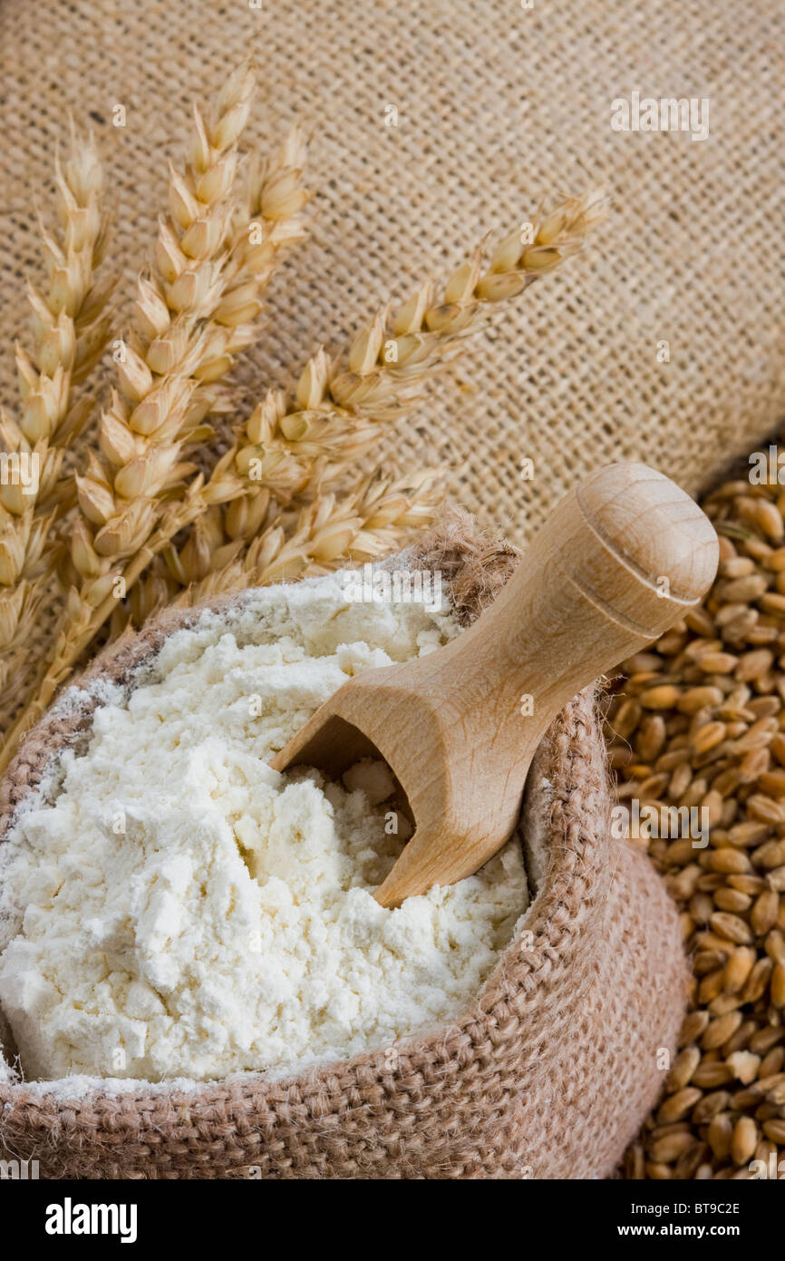 Wheat ears and flour in jute bag - Stock Image