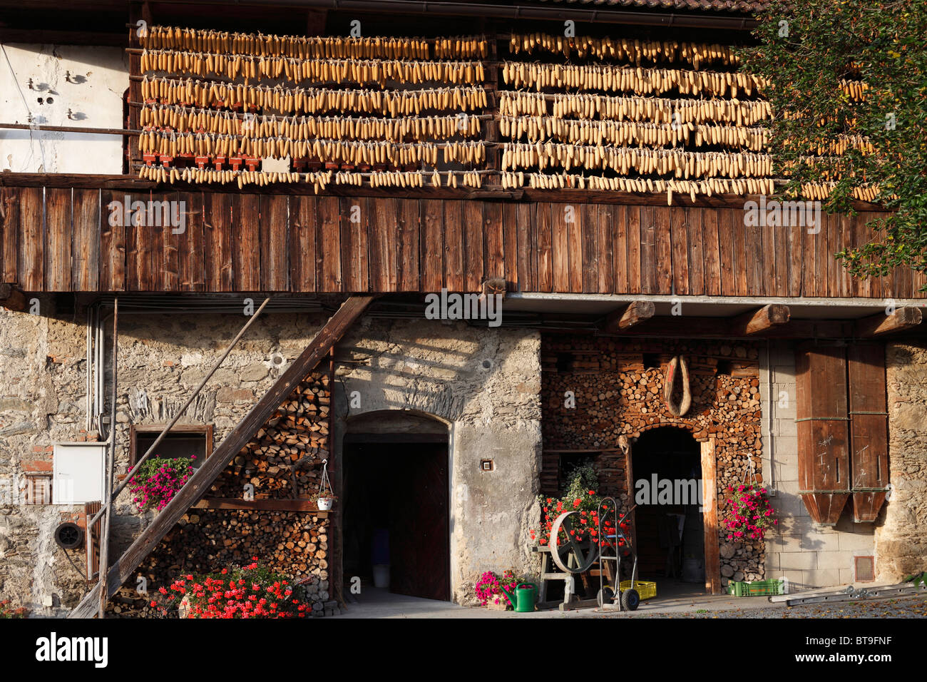 Old Liendl farm, suspended corn, Keutschach am See, Carinthia, Austria, Europe - Stock Image