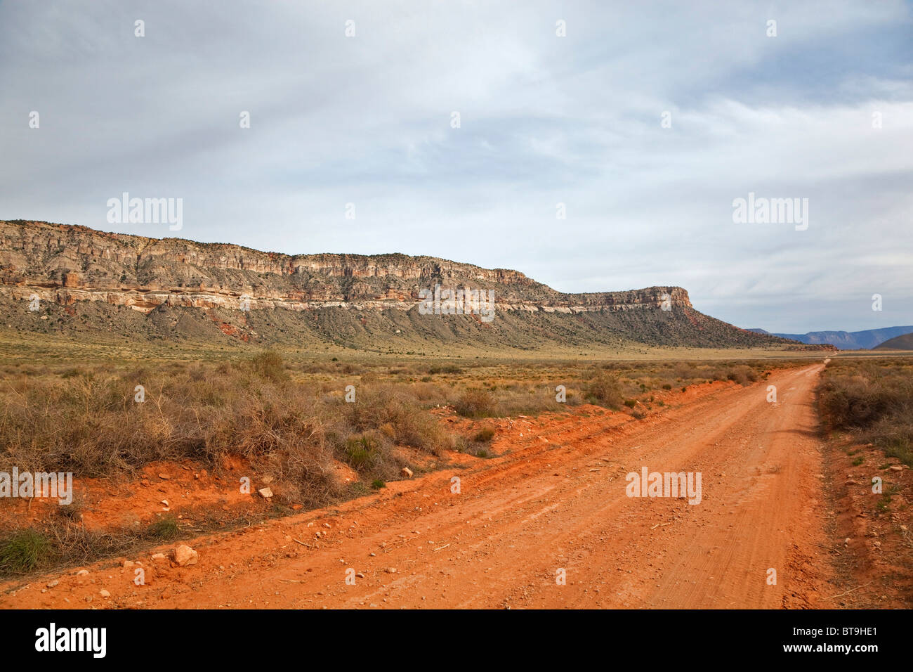 Offroad trail on the way to Toroweap Point at the Grand Canyon, Tuweep Area, North Rim, Arizona, USA - Stock Image