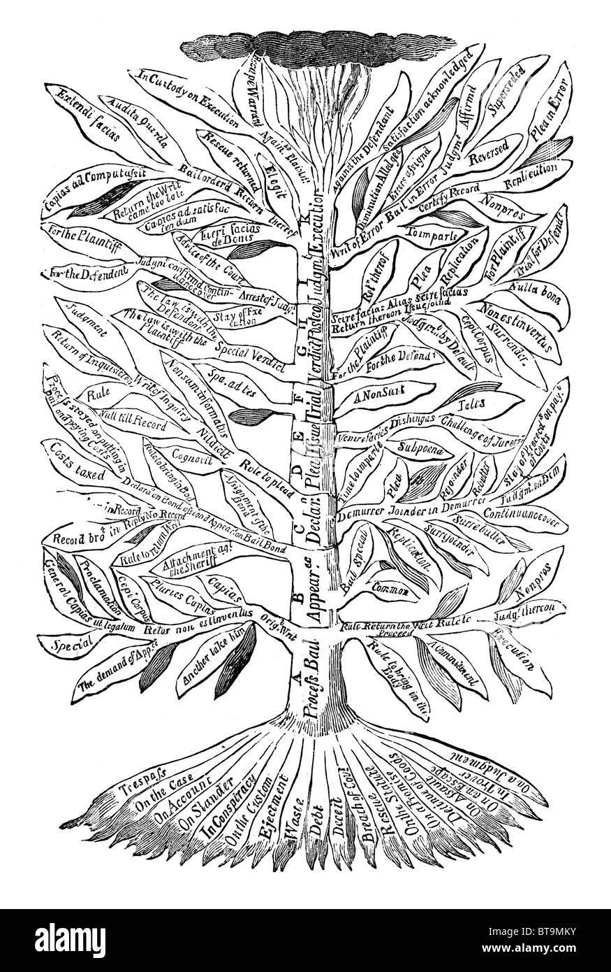 The Tree of Common Law; Black and White Illustration from William Hone's Everyday Book Stock Photo