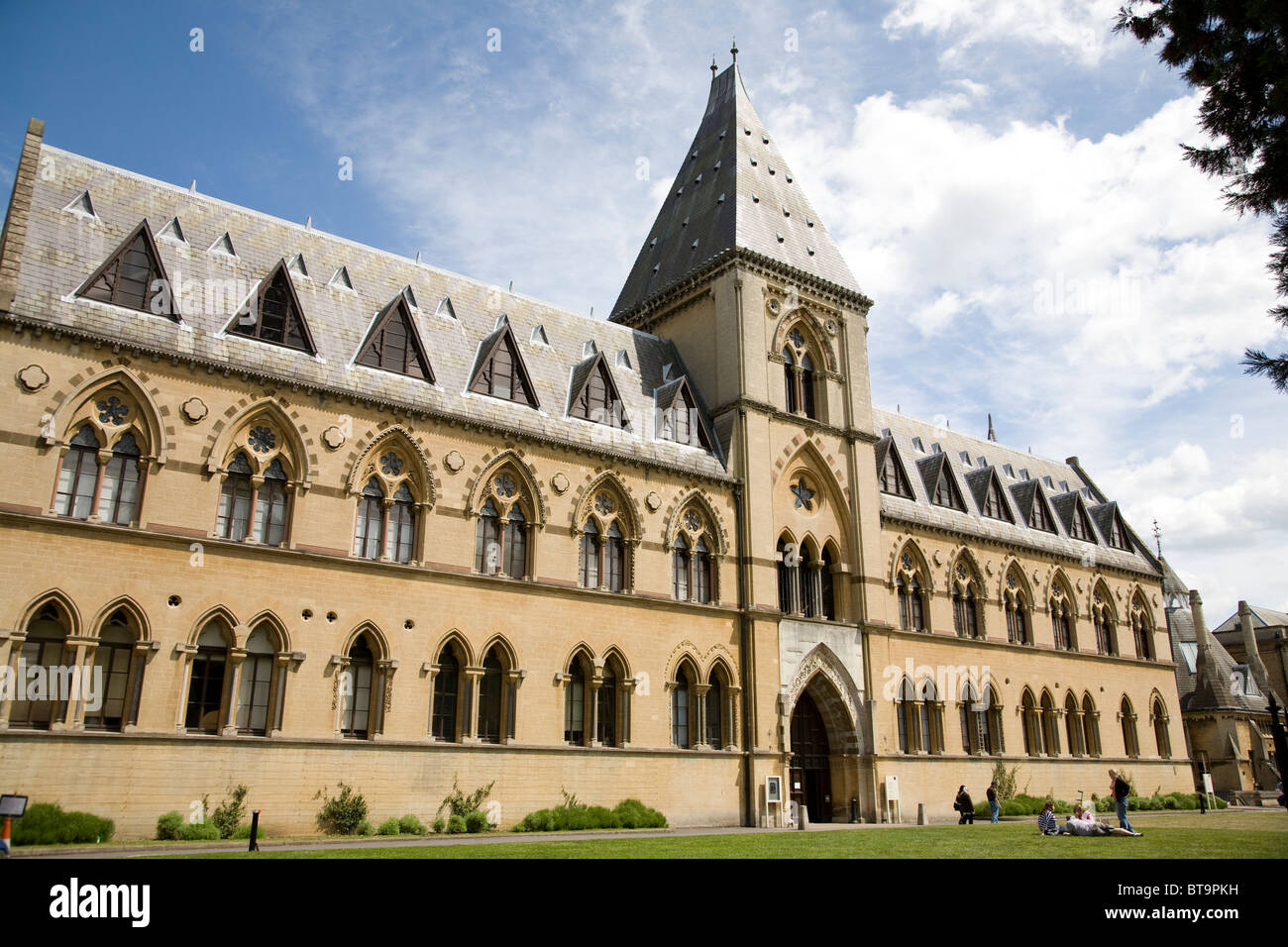 Oxford University, Museum of Natural History. Oxford. England - Stock Image