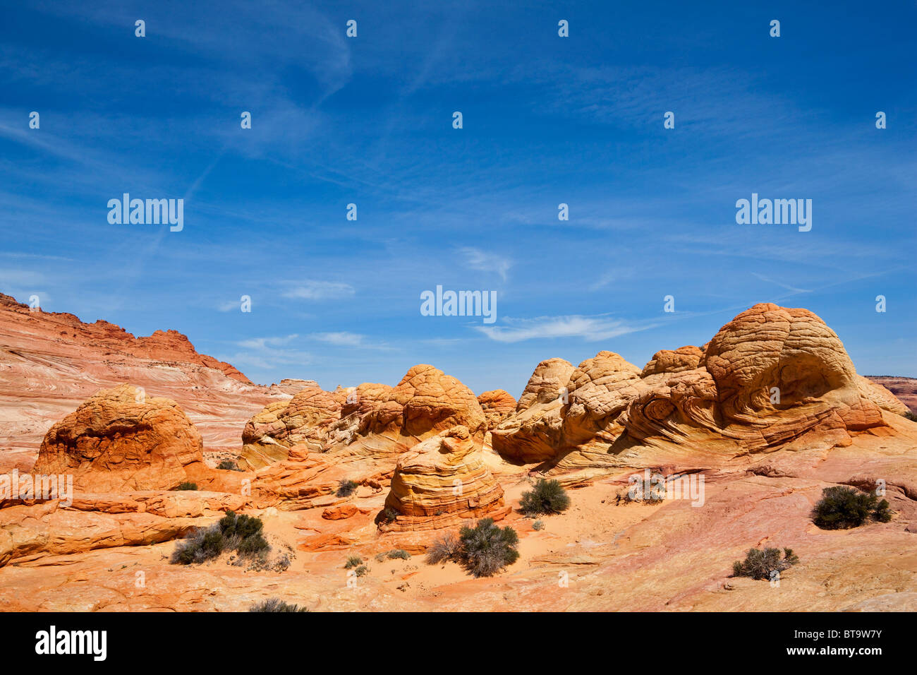 Brain Rocks, rock formations in Coyote Buttes North, Paria Canyon-Vermilion Cliffs Wilderness, Utah, Arizona, USA - Stock Image