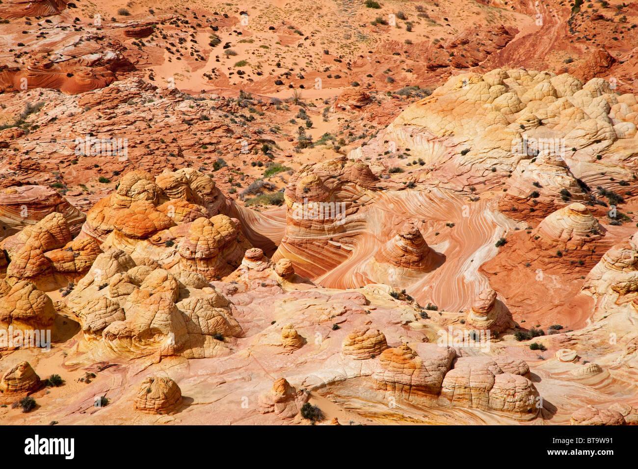 Brain Rocks, bizarre rock formations in Coyote Buttes North, Paria Canyon-Vermilion Cliffs Wilderness, Utah, Arizona, - Stock Image