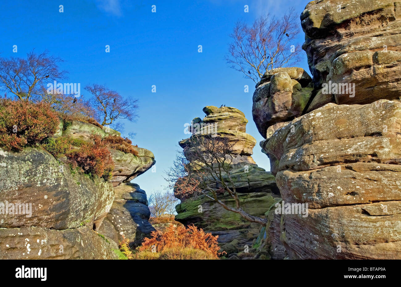 Brimham famous rocks in yorkshire - Stock Image