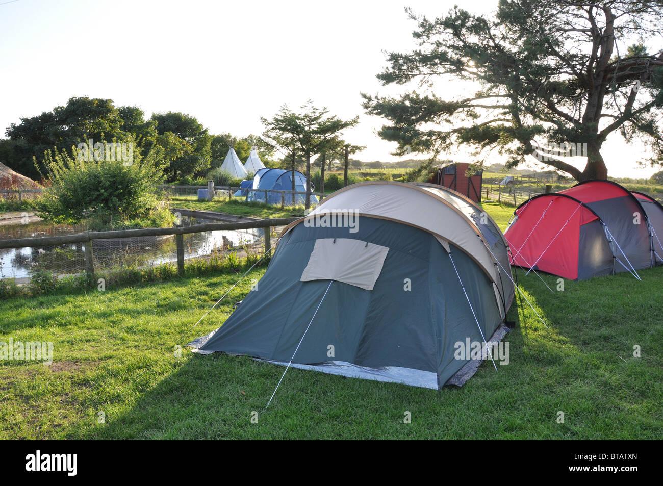 Camping at Clyne Farm, Mayals, Swansea, West Glamorgan Wales, - Stock Image