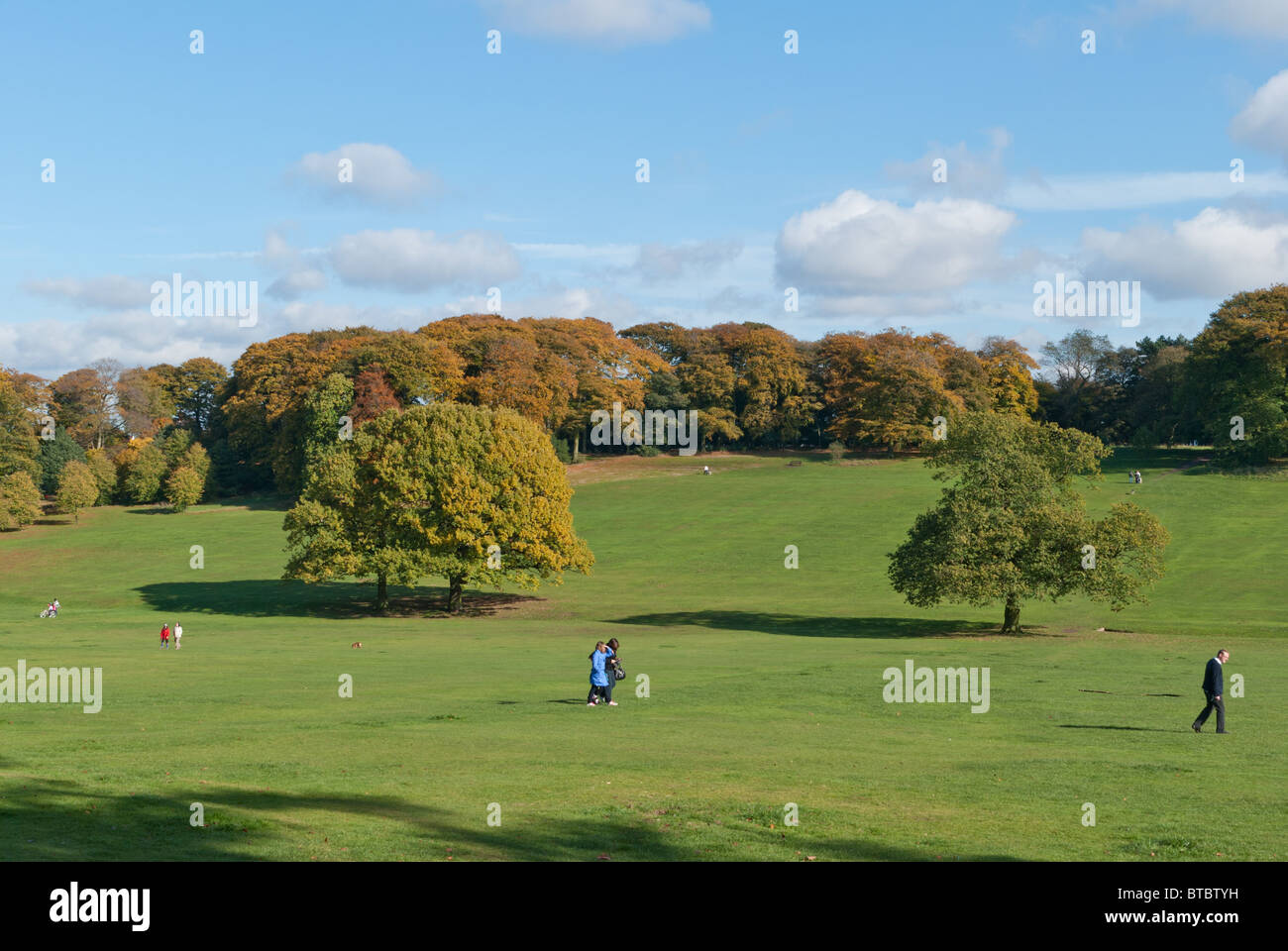 View over Warley Woods near Birmingham - Stock Image