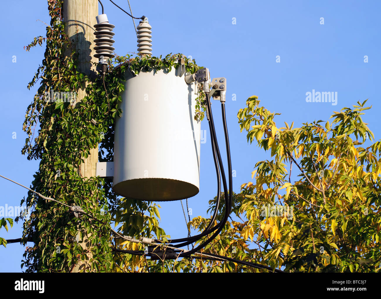 Pole Mounted Transformer Stock Photos Residential Wiring Diagram Electrical On A Vine Covered In Neighborhood Of Laval Quebec